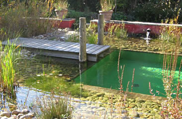 Baignades en provence for Autoconstruction piscine naturelle